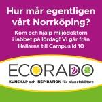 Annons_Ecorado_Facebook_Instagram_Lajv_8dec